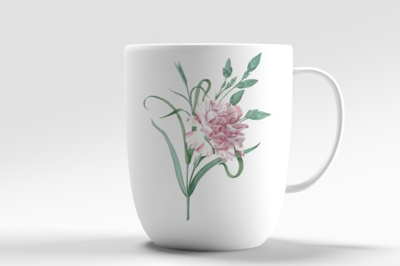 Single Carnation Watercolor Graphic Illustrations By Enliven Designs - Image 2