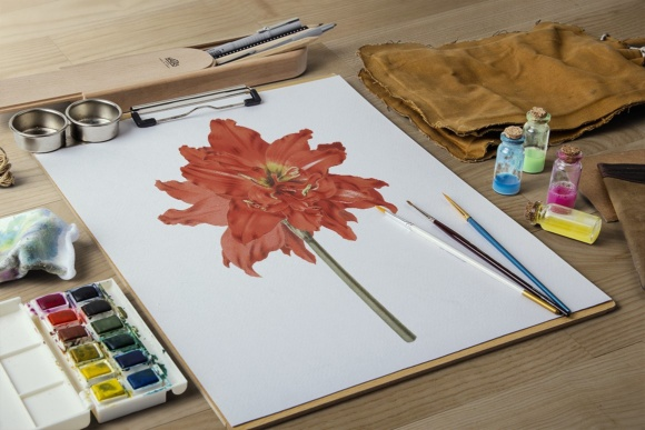 Striped Tubed Amaryllis Watercolor Graphic Illustrations By Enliven Designs - Image 7