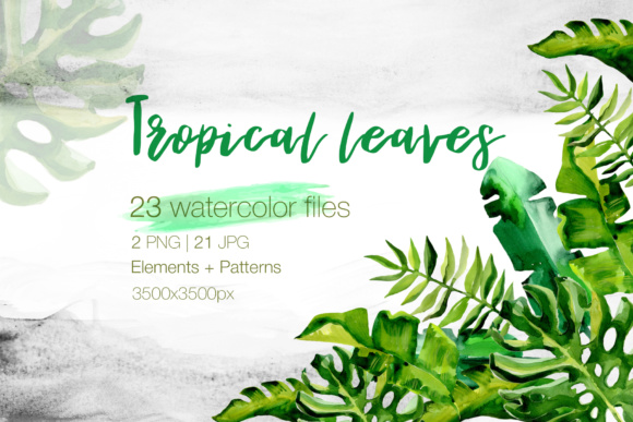 Succulent Tropical Leaves PNG Watercolor Set Graphic By MyStocks Image 1