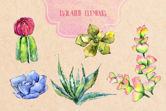 Succulents PNG Watercolor Set  Graphic By MyStocks Image 3