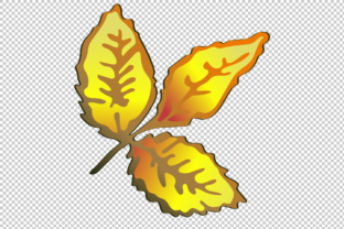 Vector Autumn Yellow Rose Hip Plant PNG Set Graphic By MyStocks
