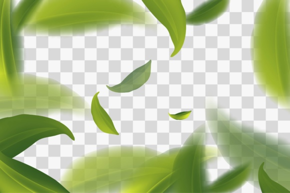 Print on Demand: Vividly Flying Green Tea Leaves, Transparent Background Vector Illustration Graphic Graphic Templates By yahyaanasatokillah - Image 1