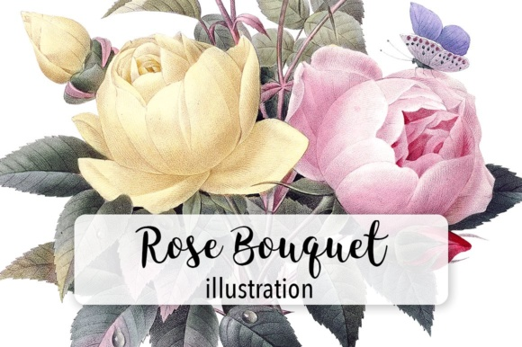 Watercolor Rose Bouquet Graphic Illustrations By Enliven Designs