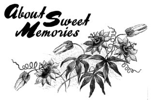 About Sweet Memories Font By Intellecta Design