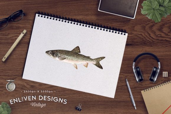 Adult Male Great Lake Trout Watercolor Graphic Item