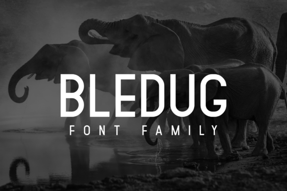 Print on Demand: Bledug Family Sans Serif Font By zuzulgo studio