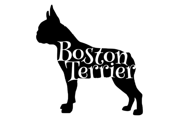 Download Free Boston Terrier Graphic By Studio 26 Design Co Creative Fabrica for Cricut Explore, Silhouette and other cutting machines.