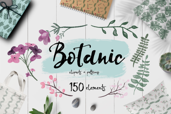 Print on Demand: Botanic Bundle + 150 Elements Graphic Illustrations By arausidp