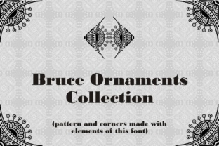 Bruce Ornaments Collection Font By Intellecta Design