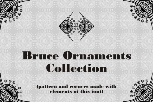 Print on Demand: Bruce Ornaments Collection Dingbats Font By Intellecta Design