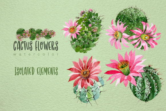 Print on Demand: Cactus Flowers Watercolor Set Graphic Illustrations By MyStocks - Image 7