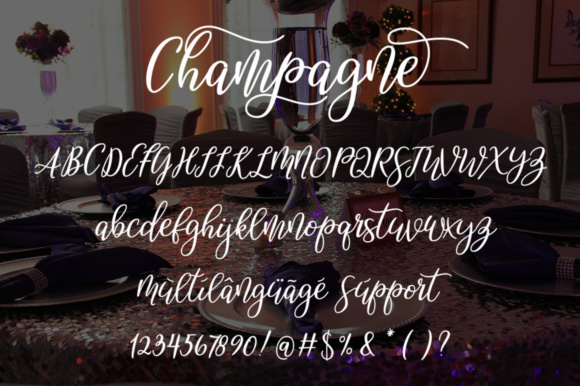Print on Demand: Champagne Script & Handwritten Font By alandya typefoundry - Image 7