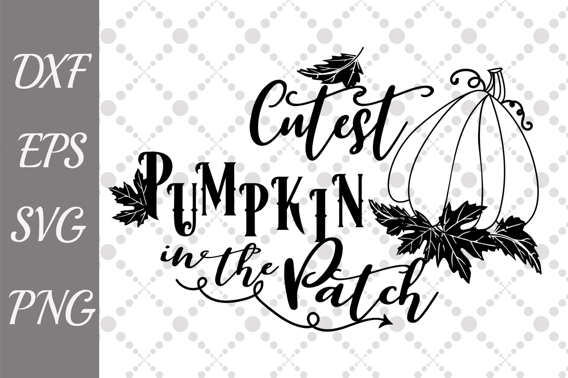 Download Free Cutest Pumpkin In The Patch Svg Graphic By Prettydesignstudio for Cricut Explore, Silhouette and other cutting machines.