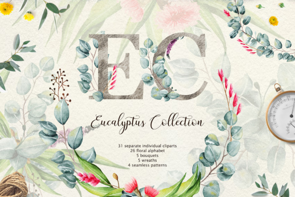 Eucalyptus Collection + Letter Graphic Illustrations By tregubova.jul