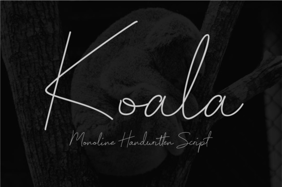 Print on Demand: Koala Script Manuscrita Fuente Por priaadmaja