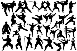 Martial Arts Silhouettes Graphic By twelvepapers