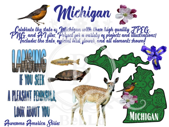 Michigan-Awesome America Series Graphic Objects By BellaUniquePrintique