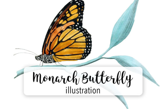Download Free Monarch Butterfly Watercolor Graphic By Enliven Designs for Cricut Explore, Silhouette and other cutting machines.