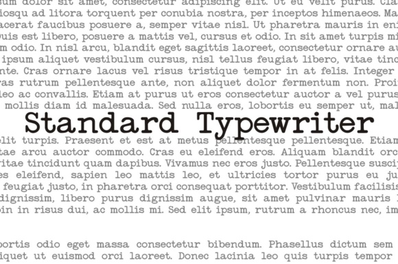 Print on Demand: Standard Typewriter Serif Schriftarten von Intellecta Design