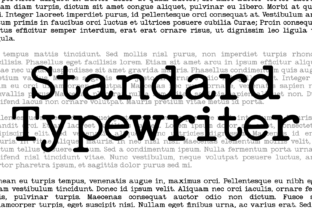 Print on Demand: Standard Serif Font By Intellecta Design