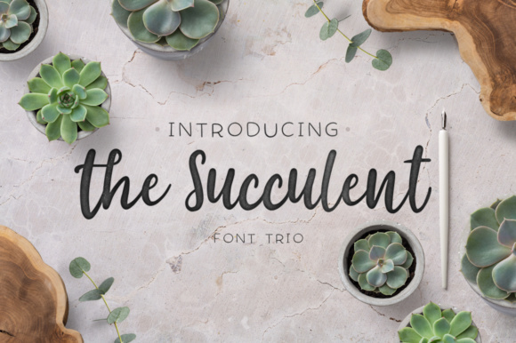 The Succulent Trio Script & Handwritten Font By Latin Vibes