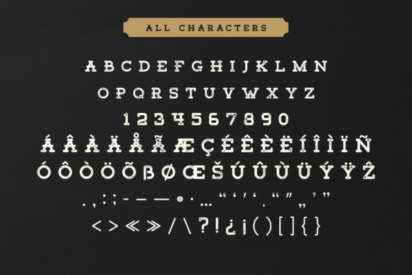 Print on Demand: Tigreal Family Slab Serif Font By craftsupplyco - Image 2