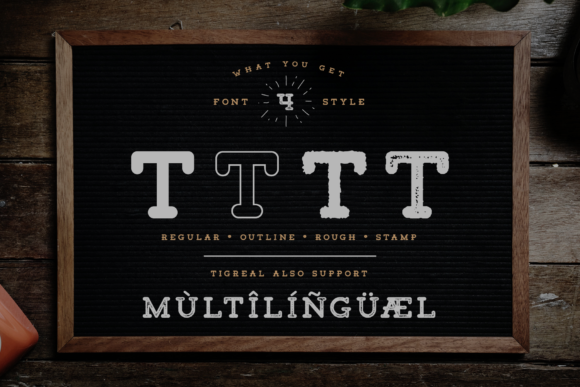 Print on Demand: Tigreal Family Slab Serif Font By craftsupplyco - Image 5