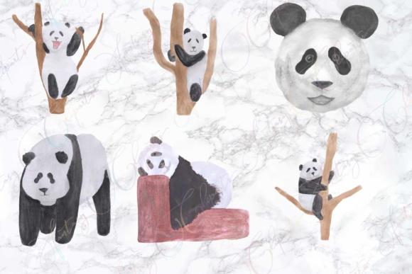 Watercolor Hand Drawn Panda Clipart Graphic By fantasycliparts Image 2