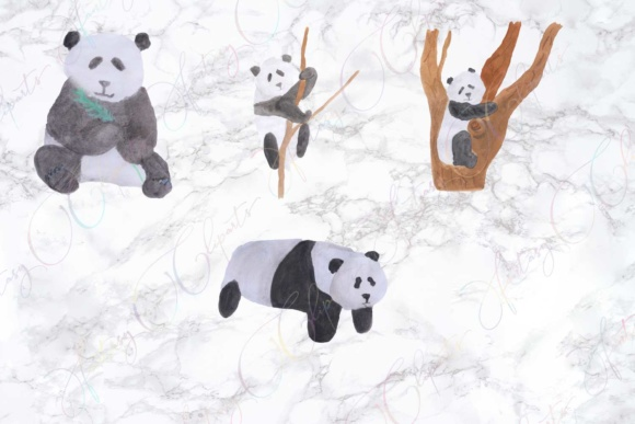 Watercolor Hand Drawn Panda Clipart Graphic By fantasycliparts Image 3