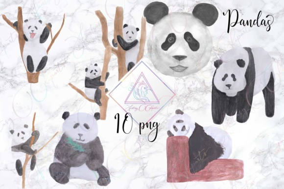 Watercolor Hand Drawn Panda Clipart Graphic By fantasycliparts Image 1
