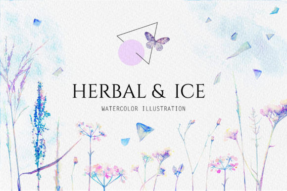 Watercolor Floral Design Collection, Herbal and Ice Graphic Illustrations By Ju Angel
