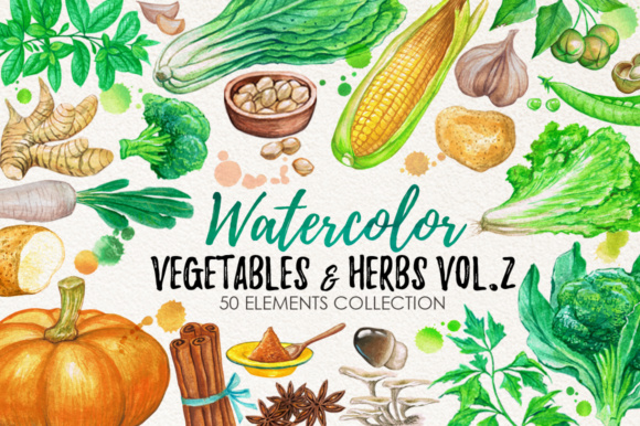 Watercolor Vegetables Graphic Illustrations By Graphobia