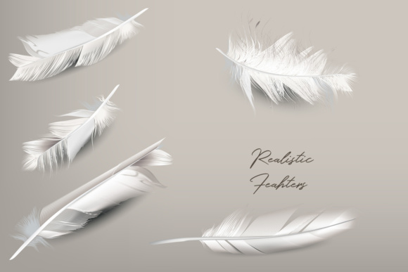 White Feather Vector Realistic Clipart Graphic By