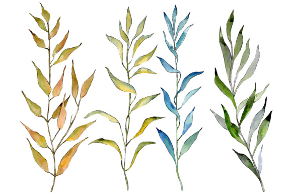 Print on Demand: Willow Branches Watercolor Set Graphic Illustrations By MyStocks