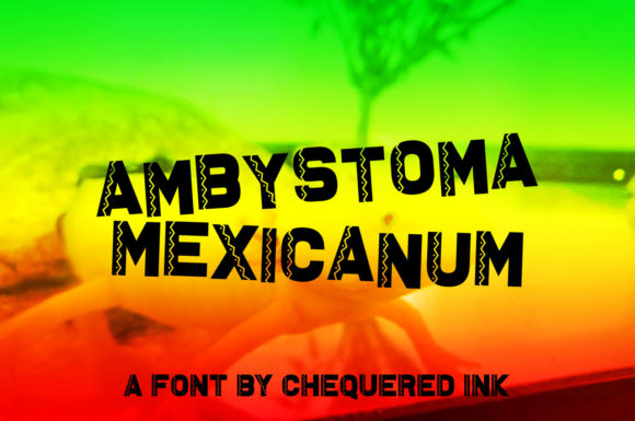 Ambystoma Mexicanum Display Font By Chequered Ink