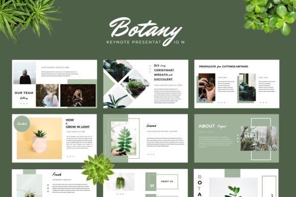 Botany Powerpoint Presentation Graphic Presentation Templates By TMint - Image 2