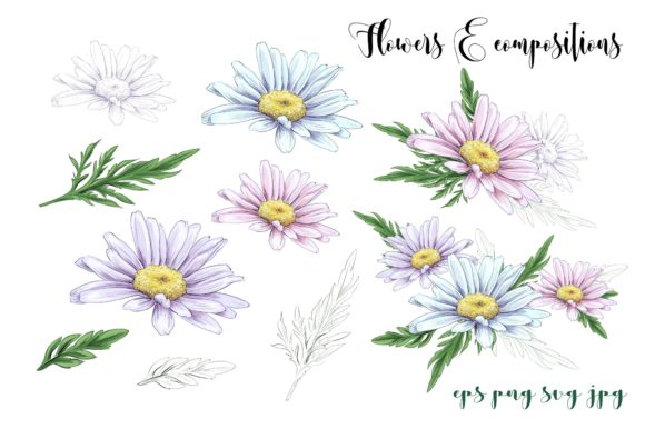 Daisies Graphic By nicjulia Image 2