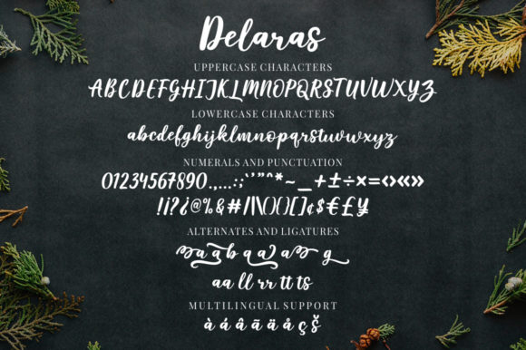 Print on Demand: Delaras Script & Handwritten Font By Megatype - Image 9