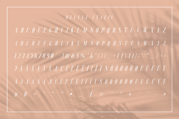 Print on Demand: Deluce Serif Font By craftsupplyco - Image 12