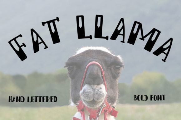 Print on Demand: Fat Llama Script & Handwritten Font By Illustrator Guru - Image 1