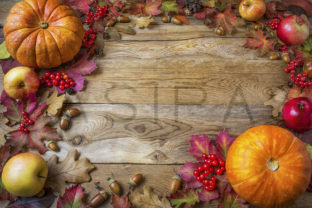 Frame of Pumpkins, Apples, Acorns, Berries and Fall Leaves on Wooden Background Graphic By TasiPas