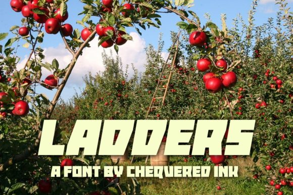 Print on Demand: Ladders Display Font By Chequered Ink
