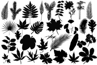 Leaves Silhouettes Graphic By twelvepapers