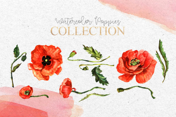 Print on Demand: Red Poppies Flowers Watercolor Graphic Illustrations By MyStocks - Image 6