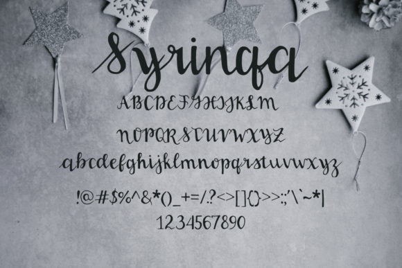 Print on Demand: Syringa Script & Handwritten Font By Eldamar Studio Fonts - Image 2