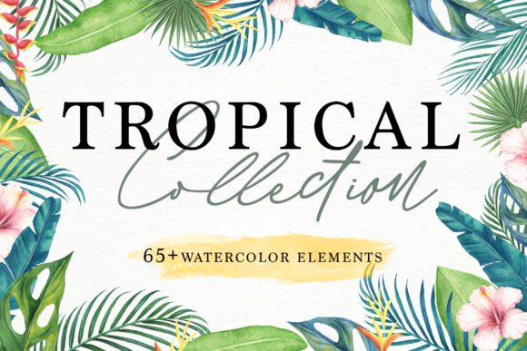 Print on Demand: Tropical Collection Graphic Illustrations By Telllu