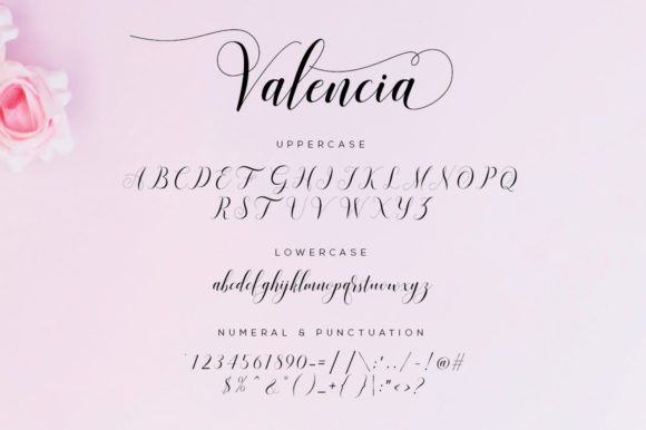 Print on Demand: Valencia Script Script & Handwritten Font By fanastudio - Image 25