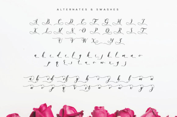 Print on Demand: Valencia Script Script & Handwritten Font By fanastudio - Image 27
