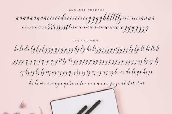 Print on Demand: Valencia Script Script & Handwritten Font By fanastudio - Image 28