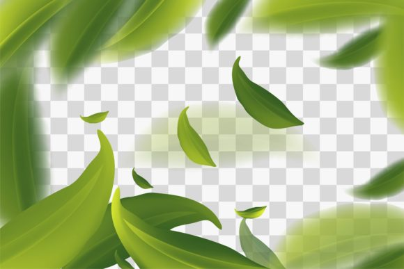 Vector Ilration With Green Tea Leaves In Motion Background Graphics